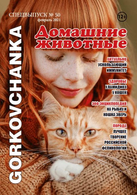 Проблемы с глазами у породистых кошек